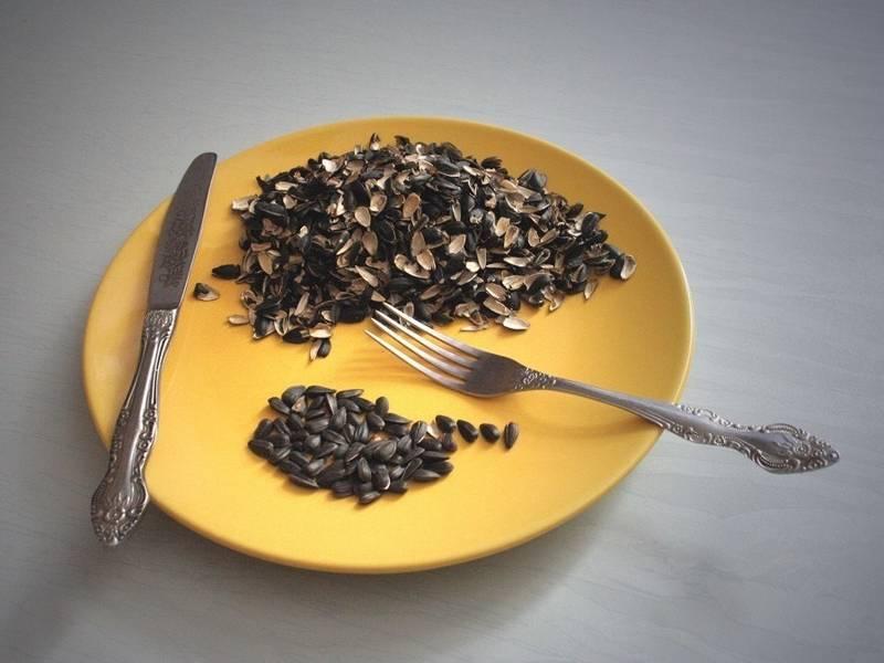 Лечение цирроза народными средствами, подсолнечные семечки