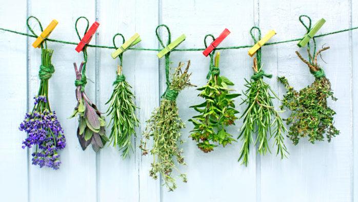 Какие травы лучше использовать от диабета 2 типа